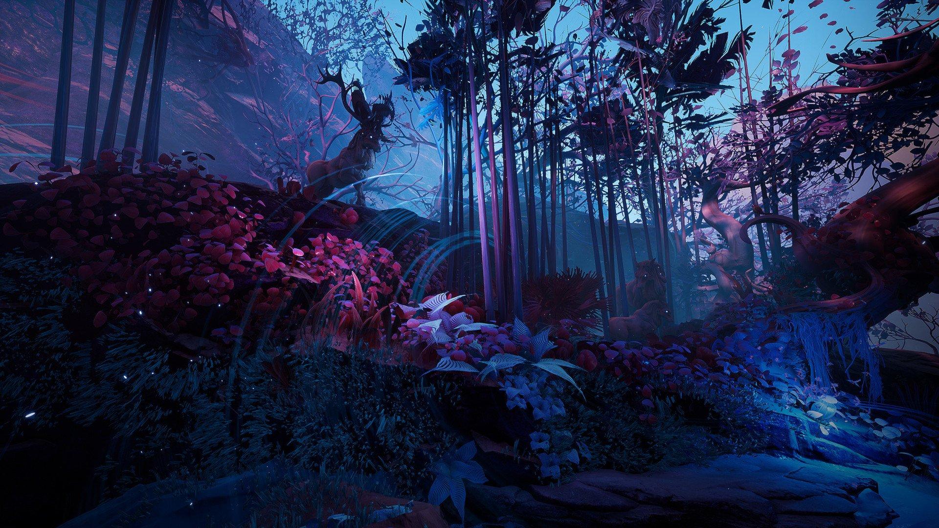 Mystic Forest Fondo De Pantalla Hd Fondo De Escritorio