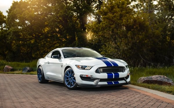 Vehicles Shelby Mustang GT 350 Ford Car Muscle Car White Car HD Wallpaper   Background Image