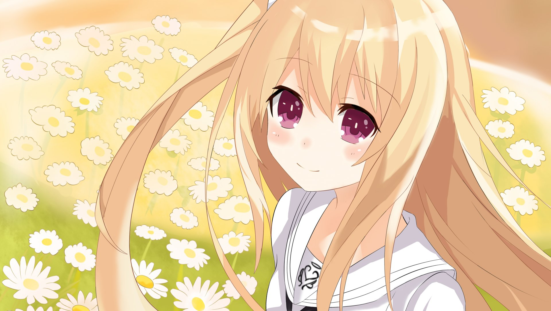 Wallpapers ID:1051666