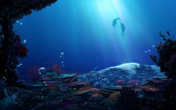 Anime Original Fish Underwater HD Wallpaper   Background Image