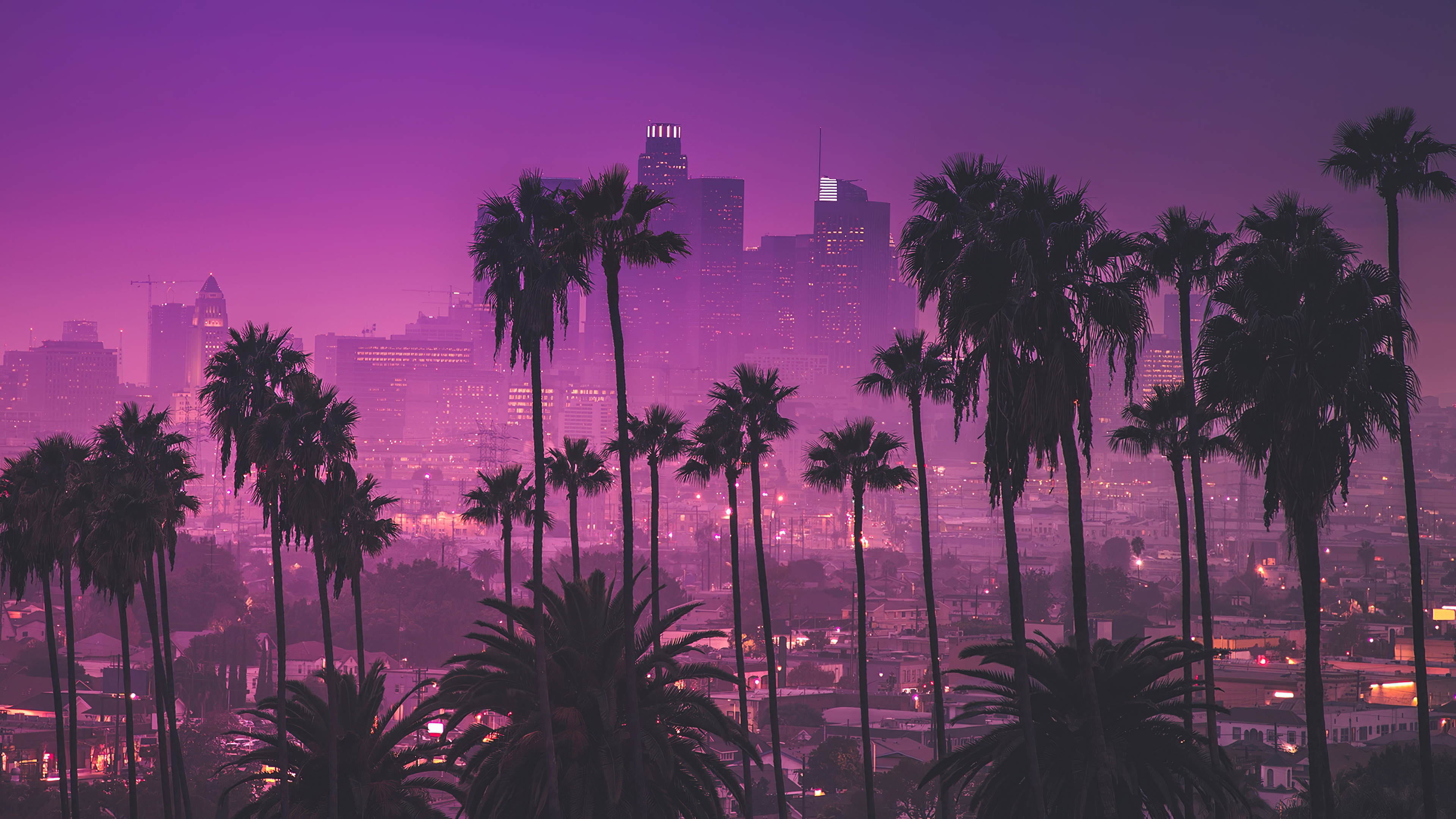 Palm Trees Against Purple Nightlights Los Angeles California 4k Ultra Hd Wallpaper Background Image 3840x2160 Id 1070350 Wallpaper Abyss