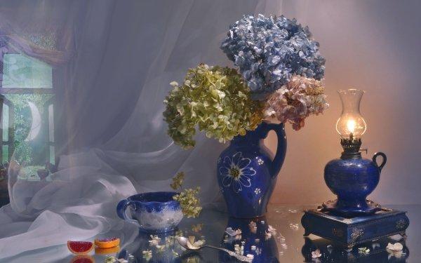 Photography Still Life Hydrangea HD Wallpaper | Background Image