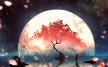 740 Starry Sky Hd Wallpapers Background Images Wallpaper Abyss