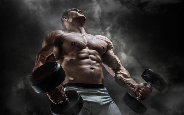 Sports Bodybuilding Muscle HD Wallpaper | Background Image