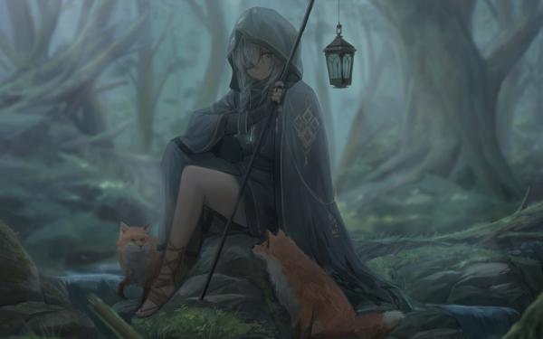 Anime Original Hood Fox Braid Lantern HD Wallpaper | Background Image