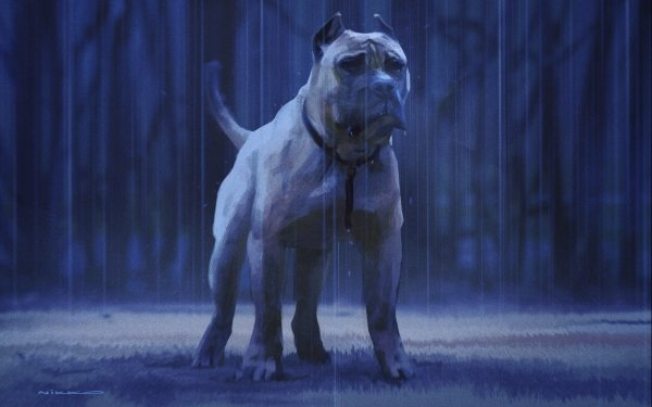 Animal Dog Dogs Pit Bull HD Wallpaper | Background Image