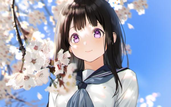 Anime Hyouka Eru Chitanda HD Wallpaper   Background Image