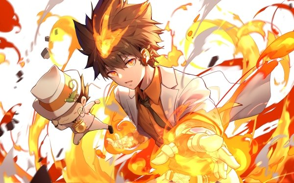 Anime Katekyō Hitman Reborn! Tsunayoshi Sawada Reborn HD Wallpaper   Background Image