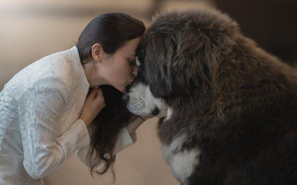 Women Mood Tibetan Mastiff Kiss Dog HD Wallpaper | Background Image