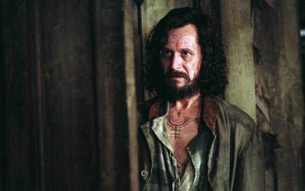 Movie Harry Potter and the Prisoner of Azkaban Harry Potter Sirius Black Gary Oldman HD Wallpaper   Background Image