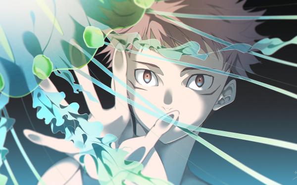 Anime Jujutsu Kaisen Yuji Itadori Pink Hair Brown Eyes Jellyfish HD Wallpaper   Background Image