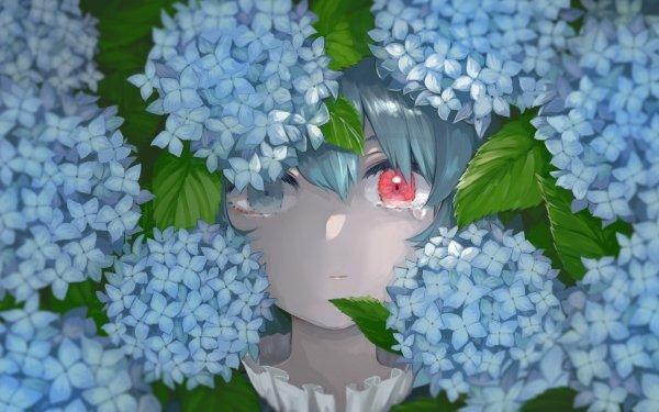Anime Touhou Kogasa Tatara HD Wallpaper | Background Image