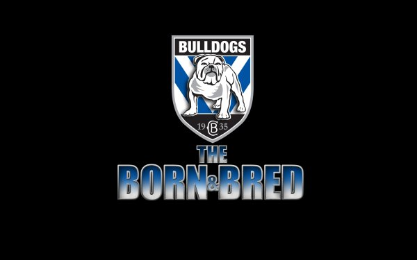 Sports Canterbury-Bankstown Bulldogs Rugby National Rugby League NRL Logo HD Wallpaper | Background Image