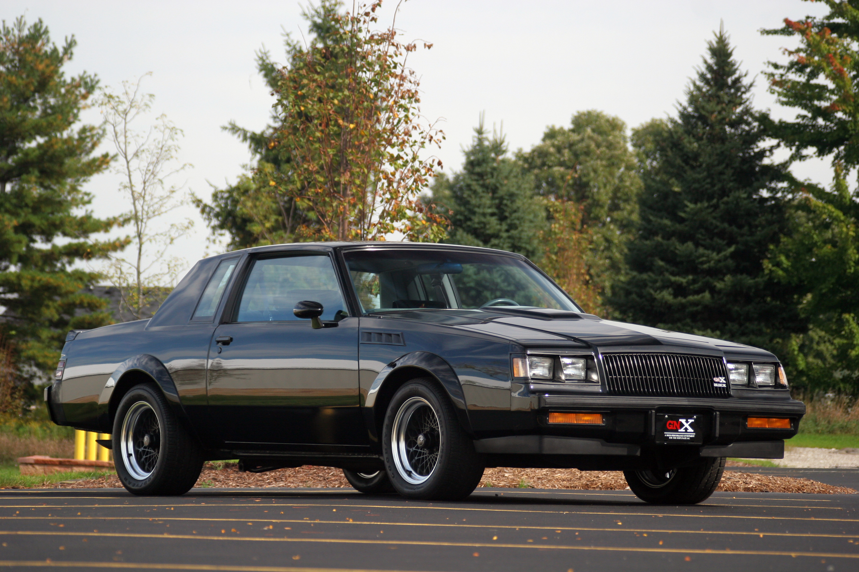 1987 Grand National Gnx >> 1987 BUICK GNX Full HD Wallpaper and Background Image | 3504x2336 | ID:288540