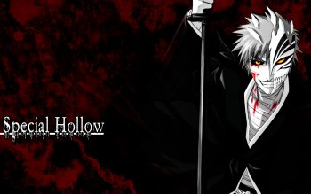 Anime - Bleach Wallpapers and Backgrounds ID : 292730