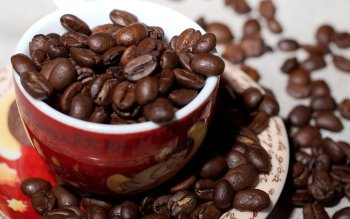Food - Coffee Wallpapers and Backgrounds ID : 293280