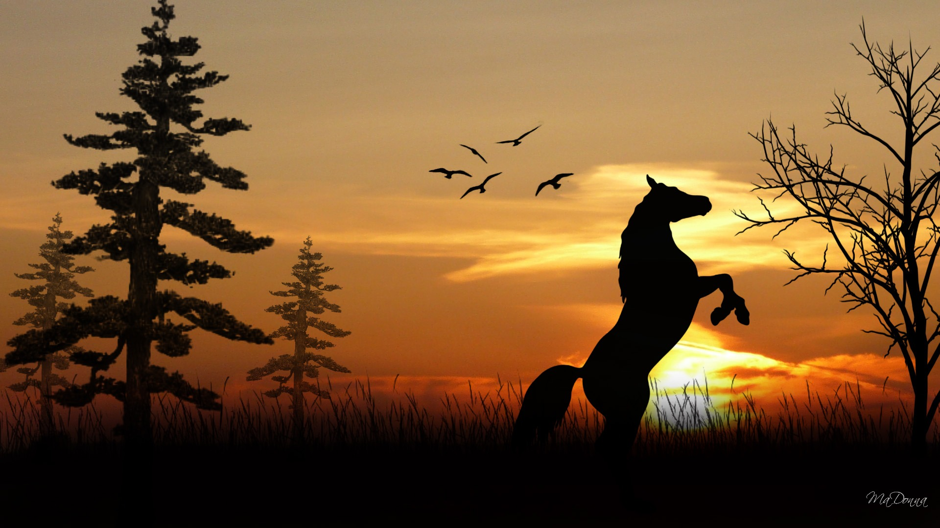 download wallpaper horses sunset - photo #19