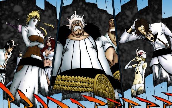 Anime Bleach Tier Halibel Baraggan Louisenbairn Coyote Starrk HD Wallpaper | Background Image