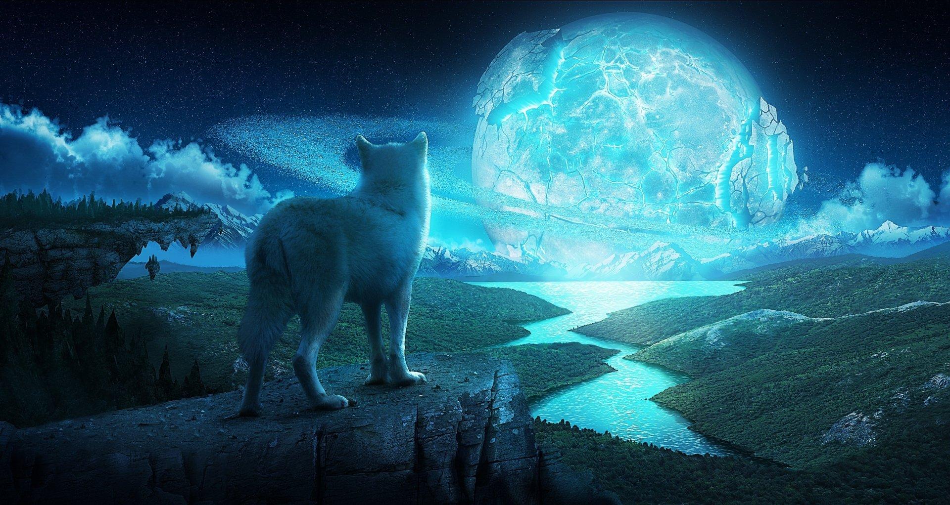 Animal - Wolf  Landscape River Magical Sun Planetscape Fantasy Wallpaper
