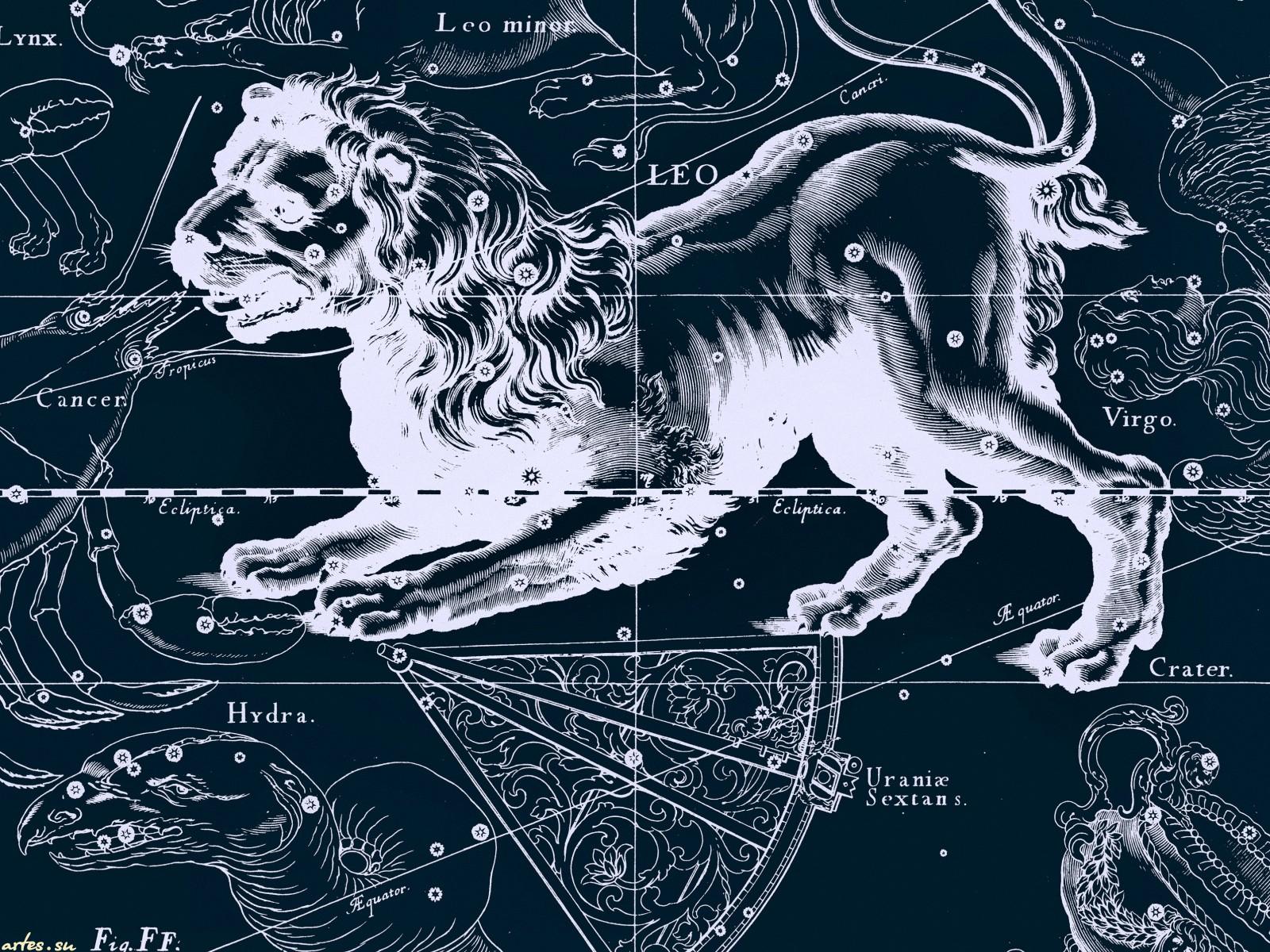 Leo Zodiac Wallpaper