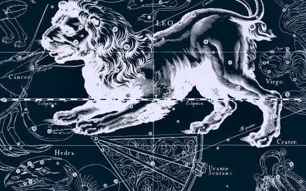 Fantasy Zodiac Zodiac Sign Horoscope Leo HD Wallpaper | Background Image