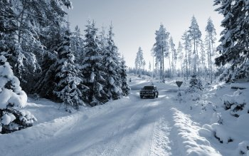Photography - Winter Wallpapers and Backgrounds ID : 307559