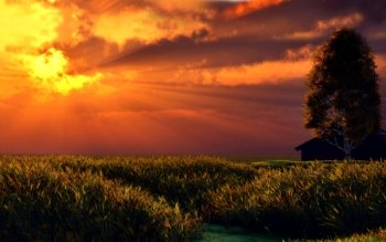 Artistisk - Sunset Wallpapers and Backgrounds ID : 309339