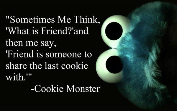 Humor Love Cookie Monster Sesame Street Cute HD Wallpaper | Background Image