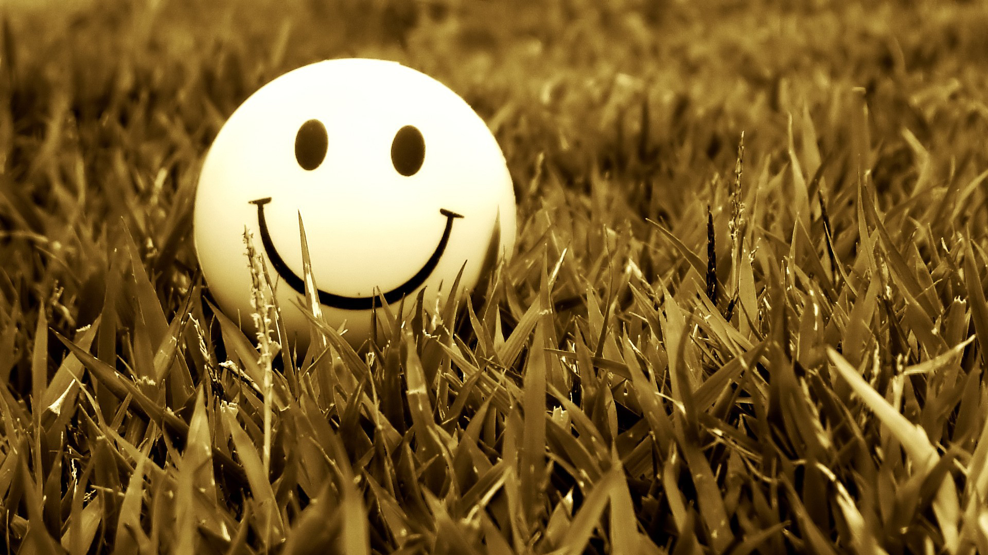Hd Smiley Face Wallpaper: Smiley Full HD Wallpaper And Achtergrond
