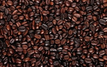 Food - Coffee Wallpapers and Backgrounds ID : 312606