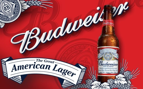 Products Budweiser Larger Beer HD Wallpaper | Background Image