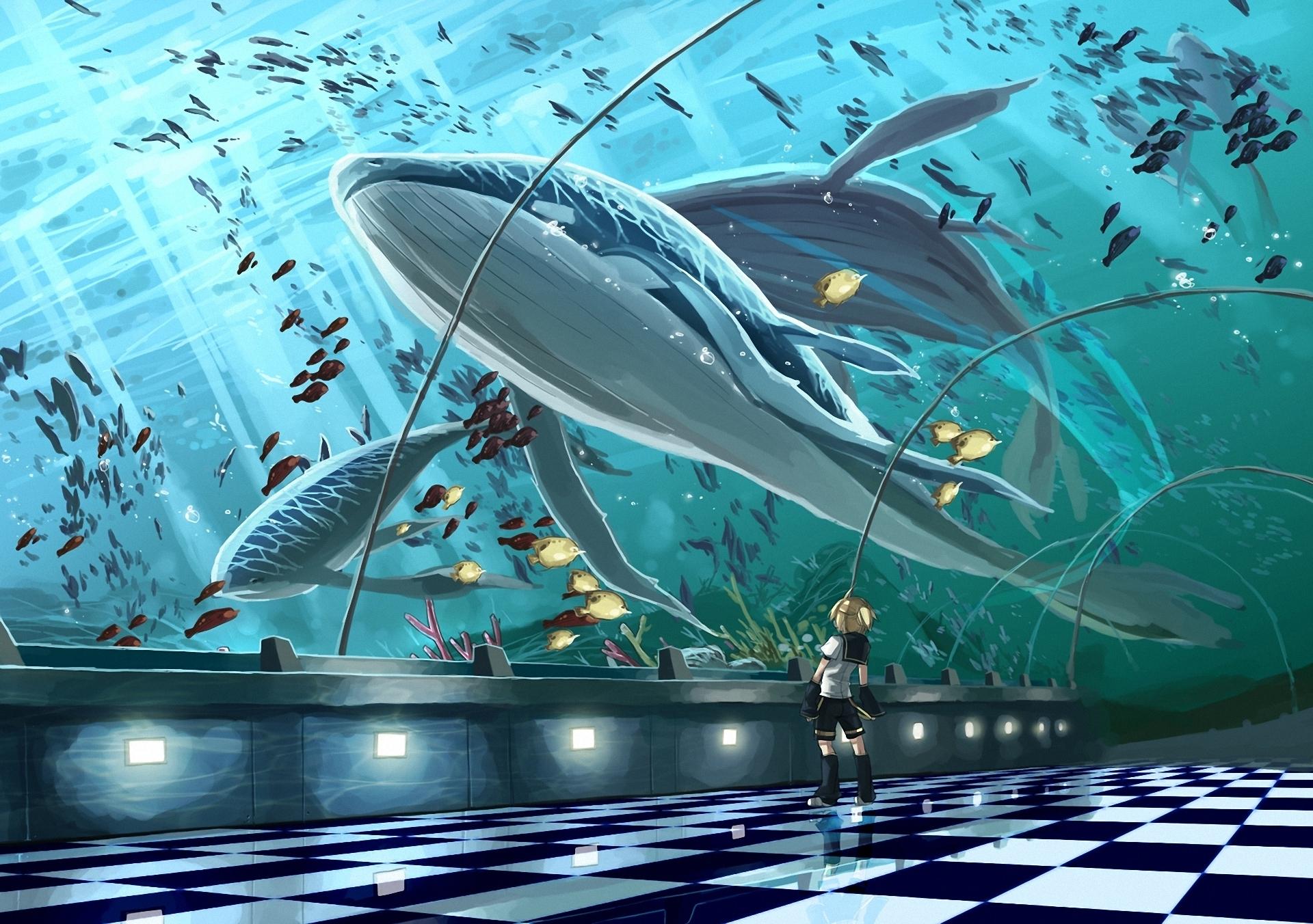 Anime - Vocaloid  - Whale - Kagamine Len Papel de Parede