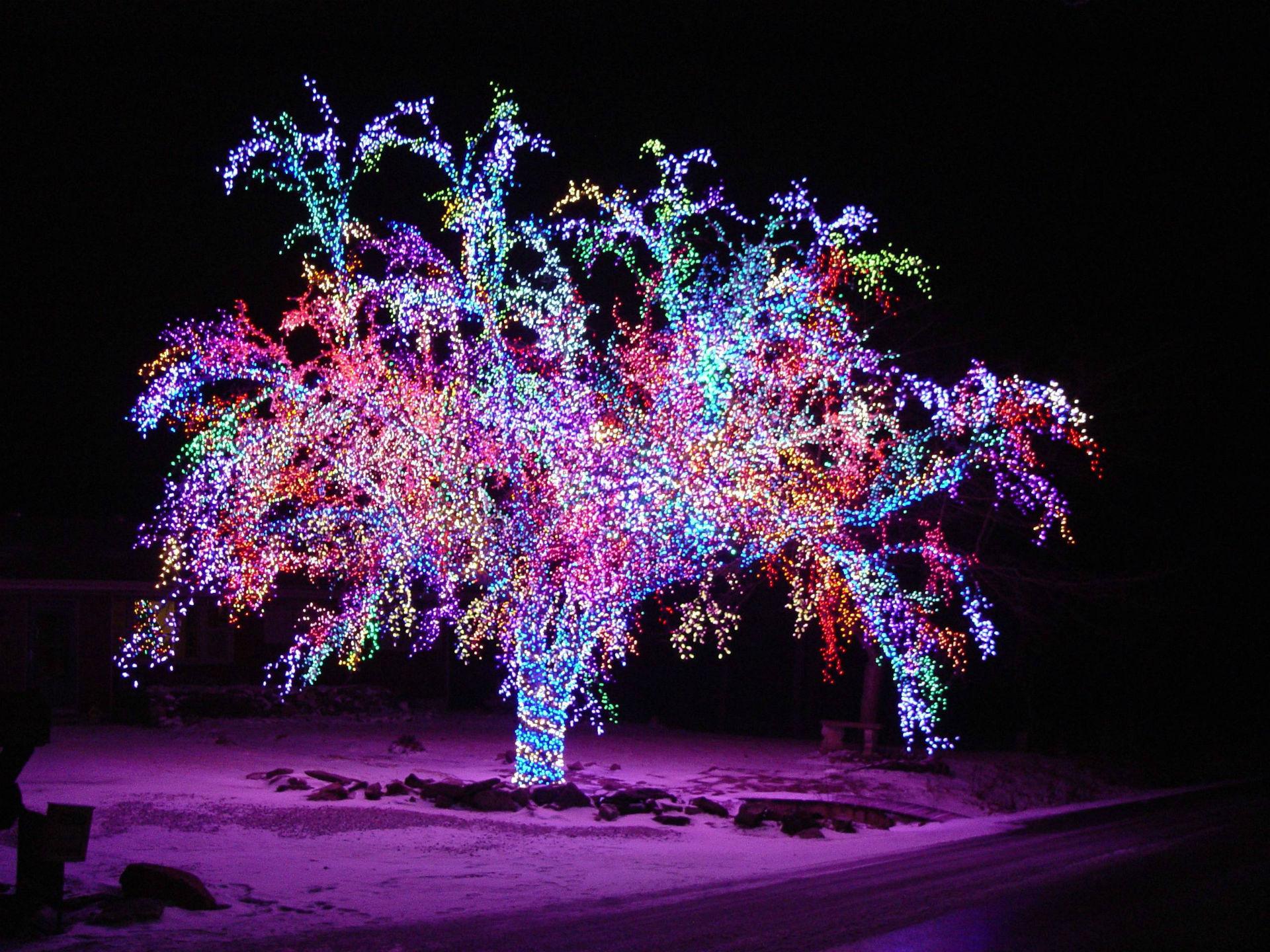 christmas tree snow lights - photo #25
