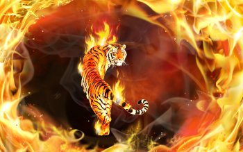 Fantasy - Animal Wallpapers and Backgrounds ID : 314417