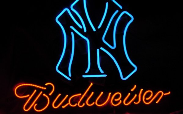 Photography Neon Neon Sign Sign Beer Sign Beer New York HD Wallpaper | Background Image