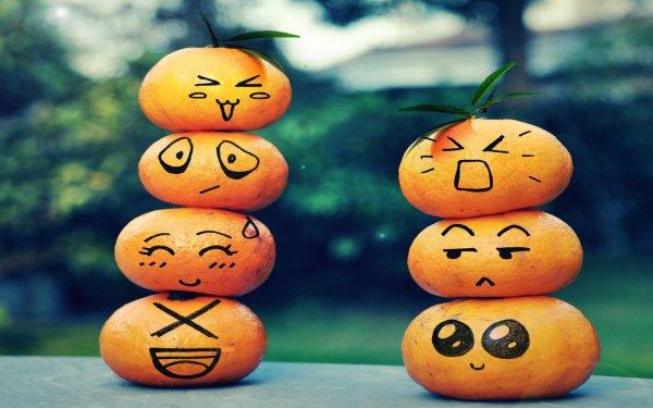 Holiday Halloween Pumpkin Smiley Humor Funny HD Wallpaper | Background Image