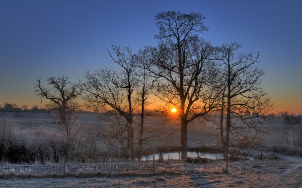 Earth Sunrise Fall Season Nature Sun Frost Fog HD Wallpaper | Background Image