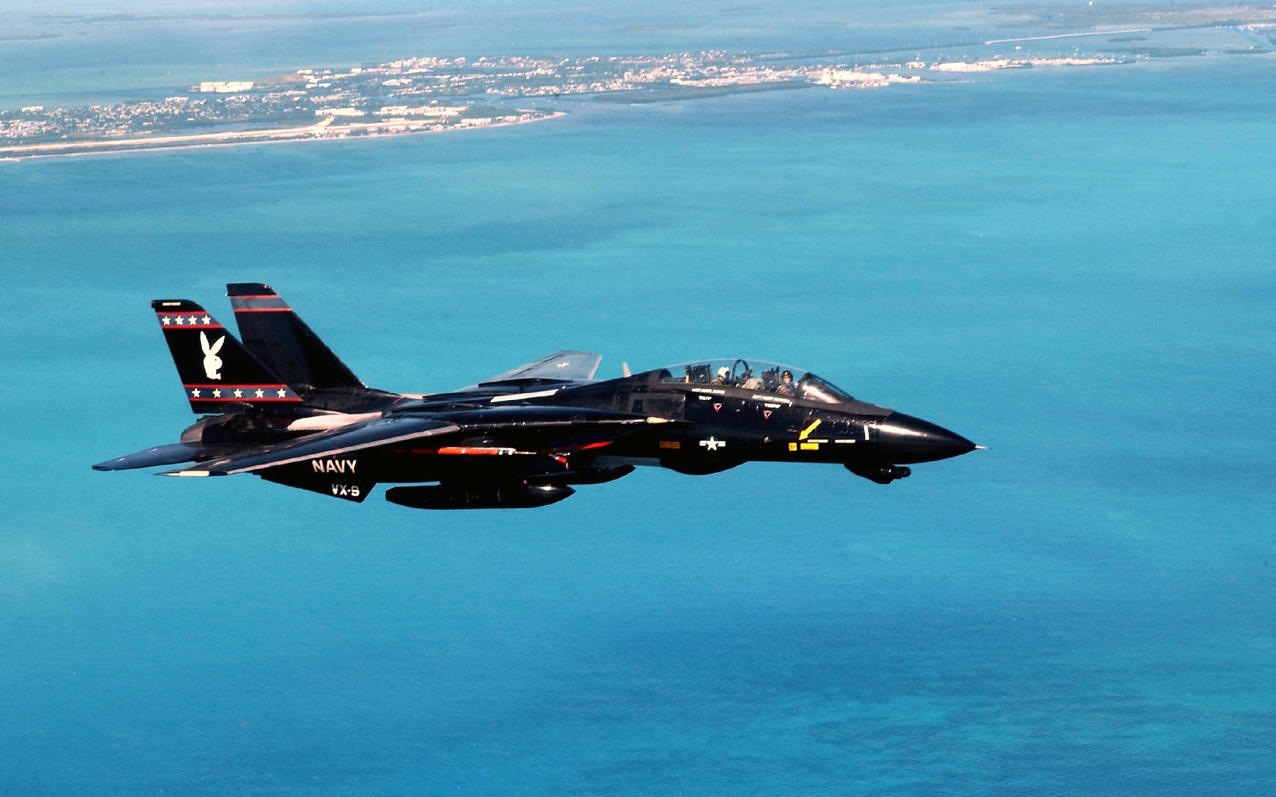 Grumman F-14 Tomcat HD Wallpaper | Background Image ...
