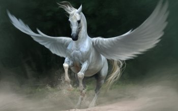 Fantasy - Pegasus Wallpapers and Backgrounds ID : 320309