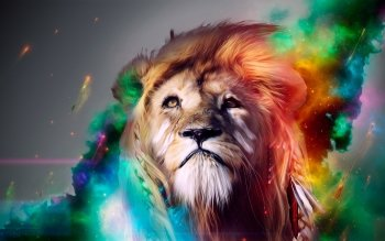 Animal - Lion Wallpapers and Backgrounds ID : 320986