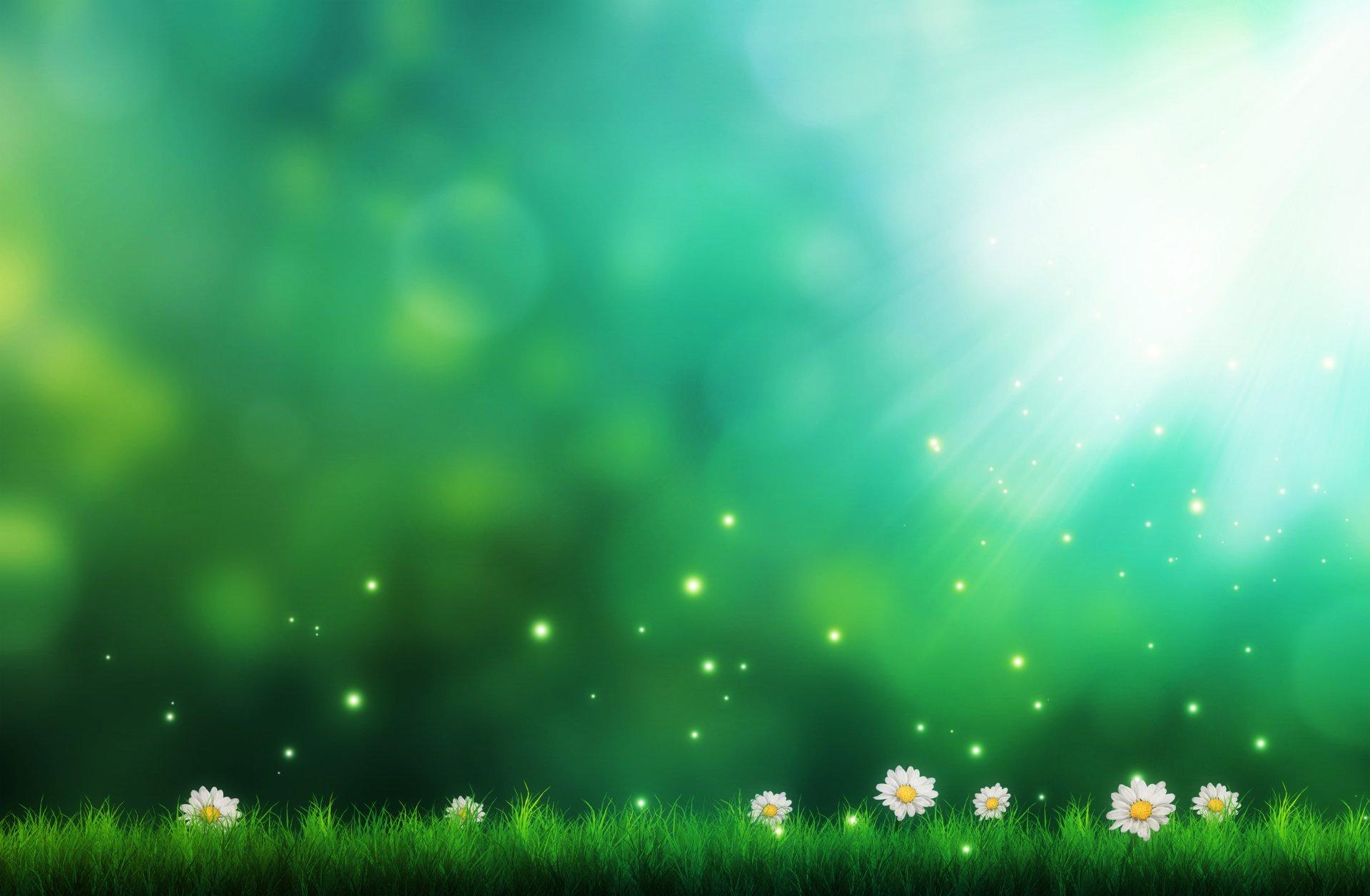 Artistique - Autre  Fleur Lumière Vert Forêt Fond d'écran