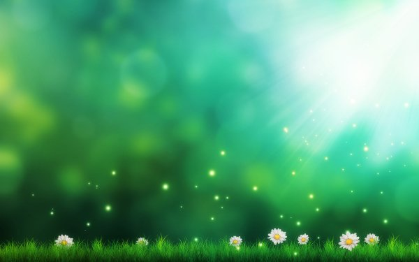 Artistic Flower Flowers Light Green HD Wallpaper   Background Image