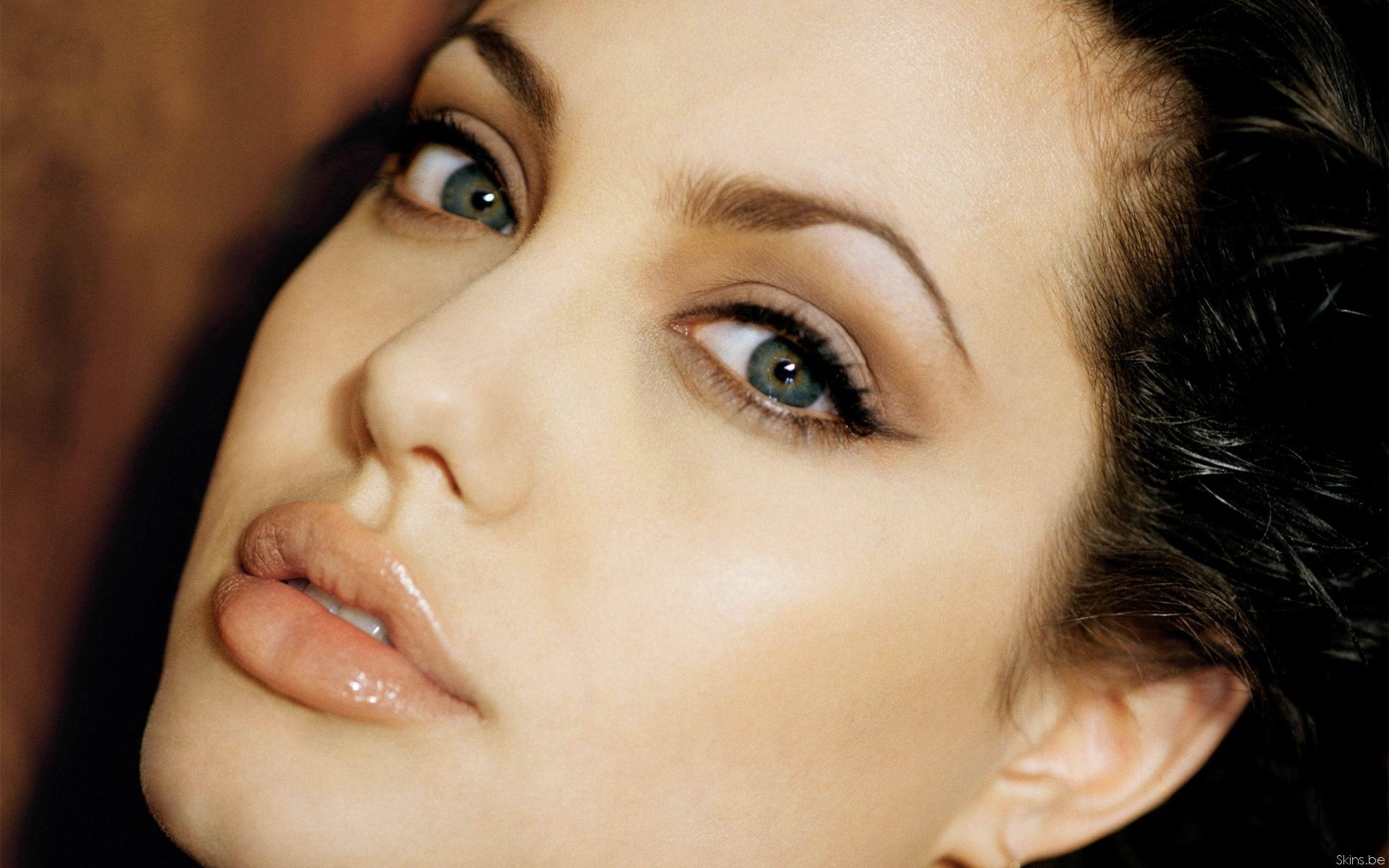 417 angelina jolie hd wallpapers | background images - wallpaper abyss