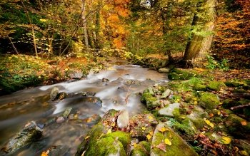 Earth - Stream Wallpapers and Backgrounds ID : 329015