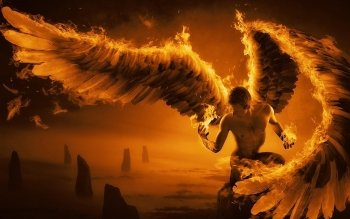Fantasy - Angel Wallpapers and Backgrounds ID : 331149