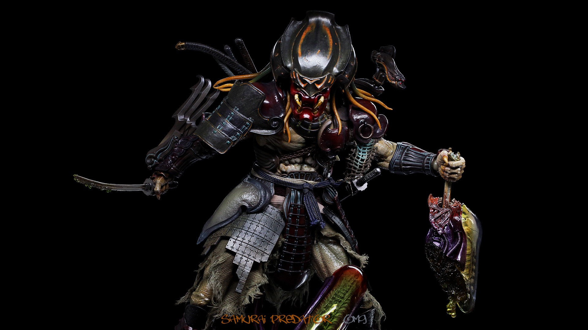 predator full hd wallpaper and background image