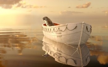 Films - Life Of Pi Wallpapers and Backgrounds ID : 333170