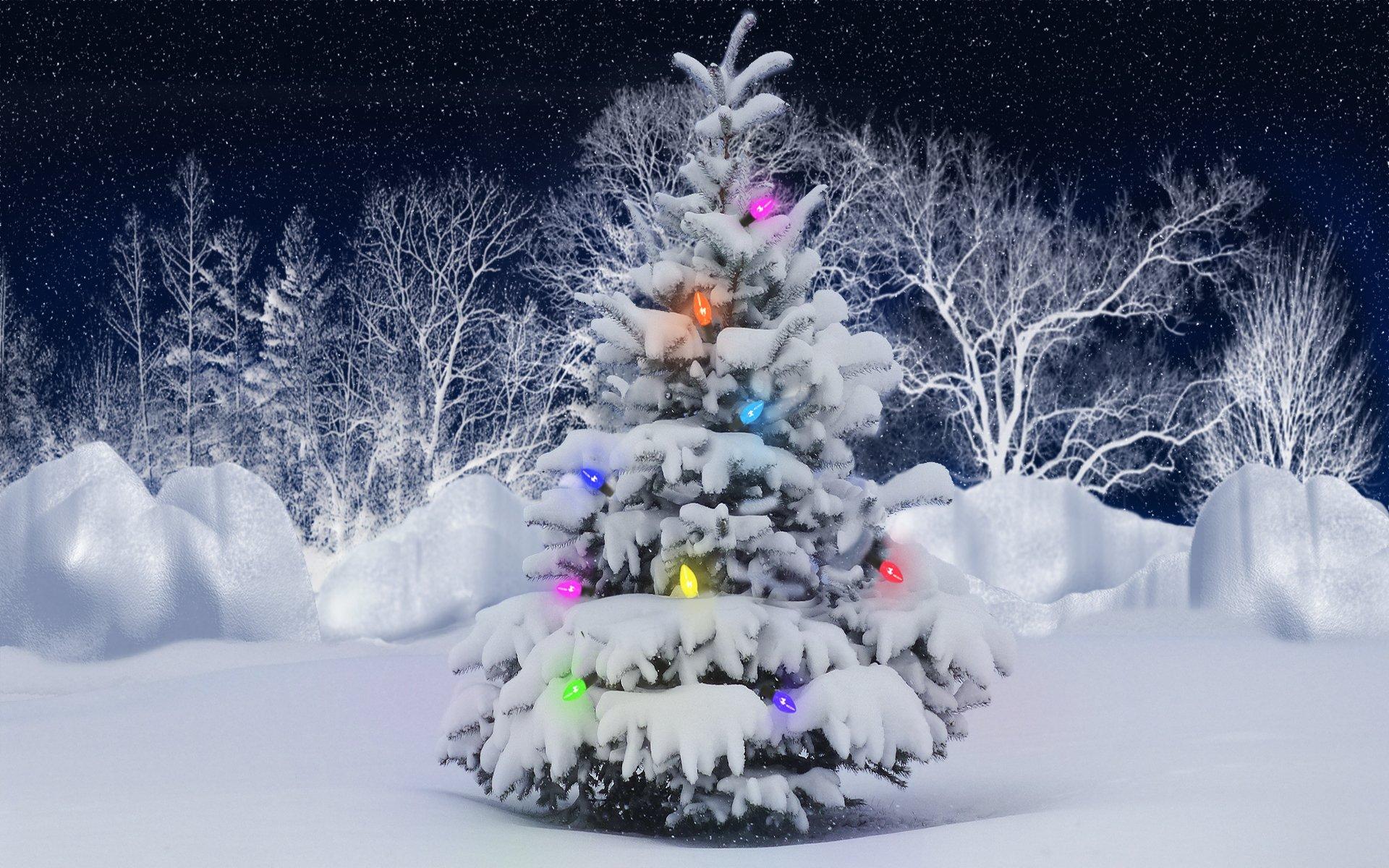 Holiday - Christmas  Snow Christmas Lights Christmas Tree Wallpaper