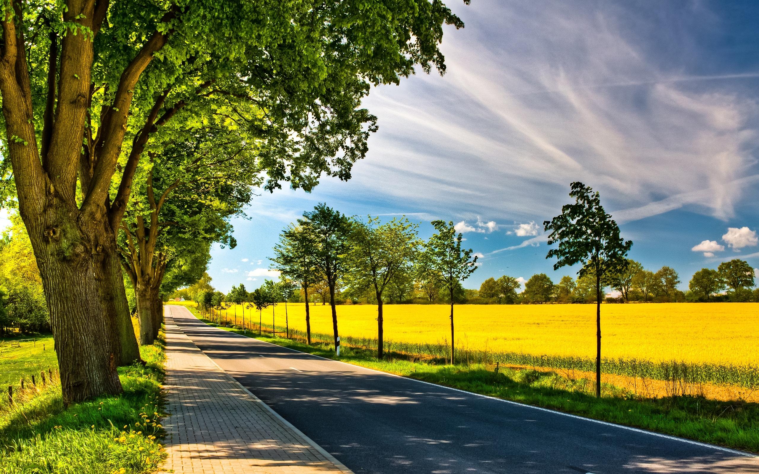Road HD Wallpaper