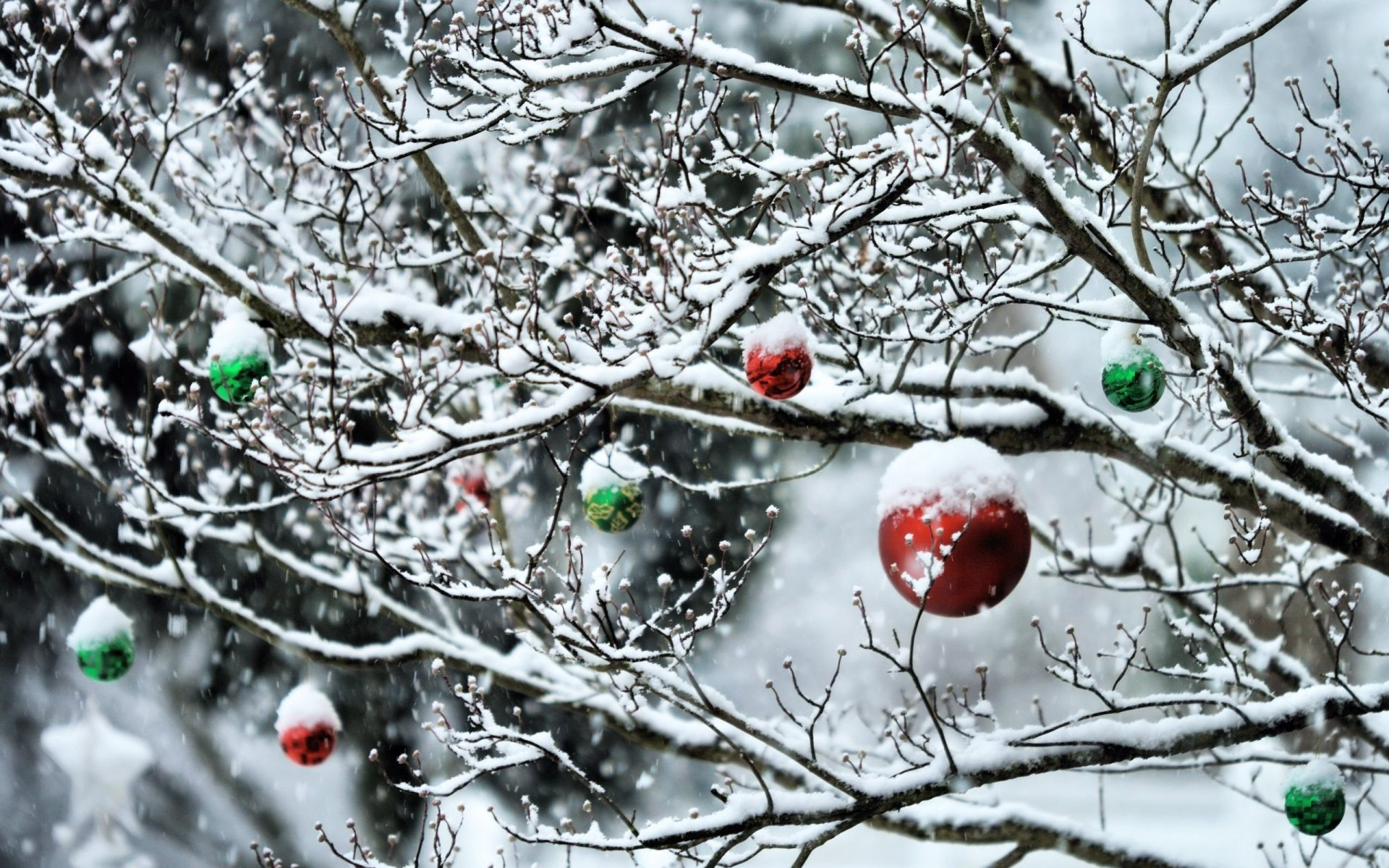 Holiday - Christmas  Christmas Ornaments Wallpaper